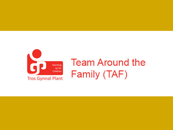 Team Around the Family